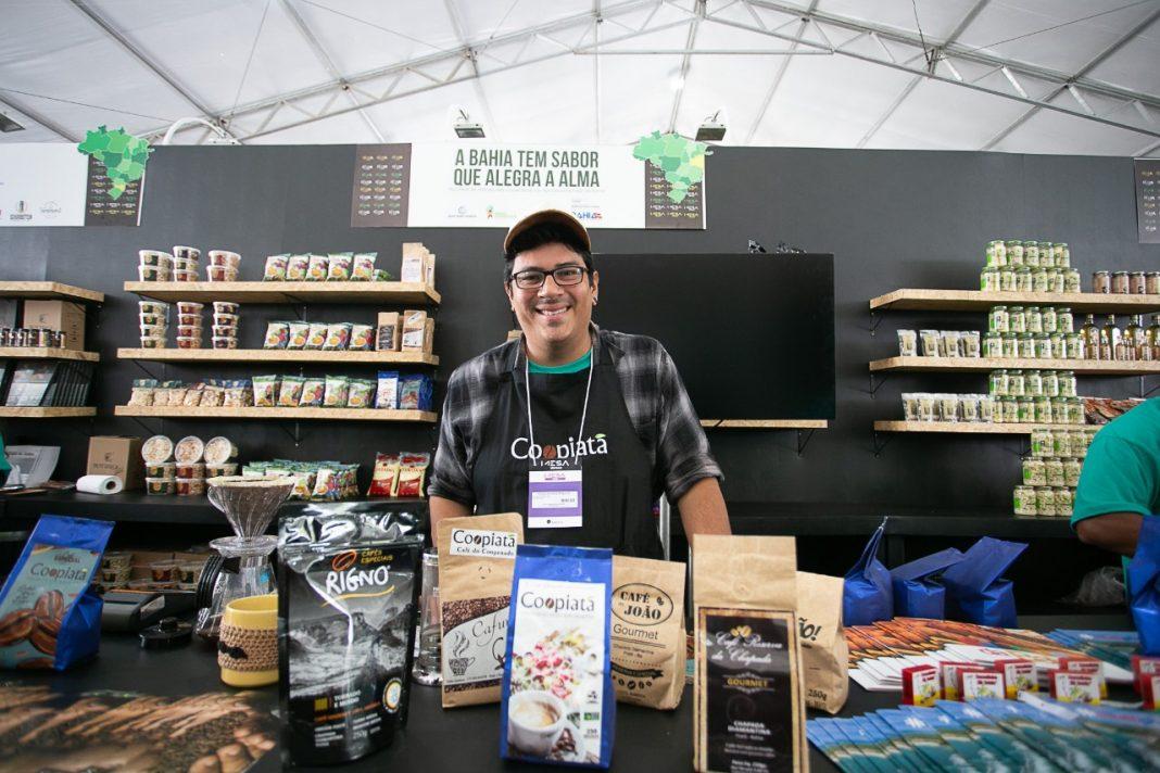 Grãos de café produzido na Chapada Diamantina | Bahia em tempo real